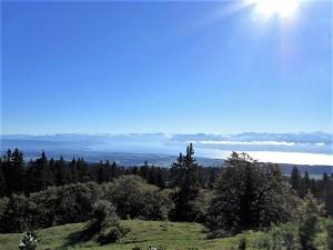 Blick auf Genfer See und Alpenkette